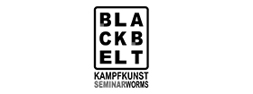 Black Belt Seminar